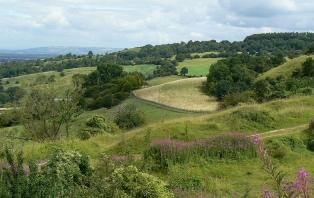 Crickley Hill Walk: Cotswolds In Miniature