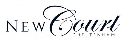 New Court BLUE Logo - CMYK_web.jpg
