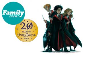 Harry Potter Show