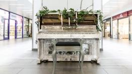 Piano Trail