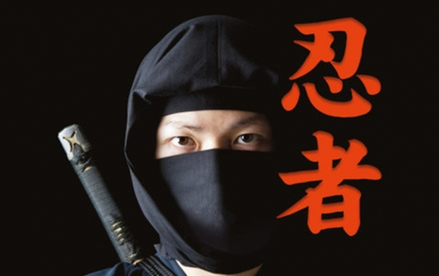 Bushido: The Samurai Spirit
