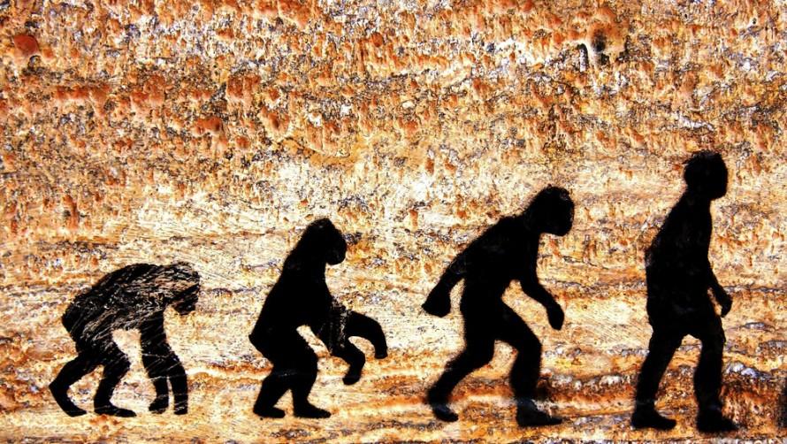 S062-will-humans-evolve.jpg