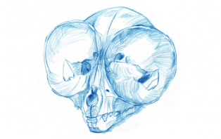 Sketching Skulls.png