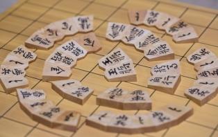 Shogi For Beginners.jpg