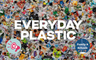 Everyday Plastic_ An Introduction.png