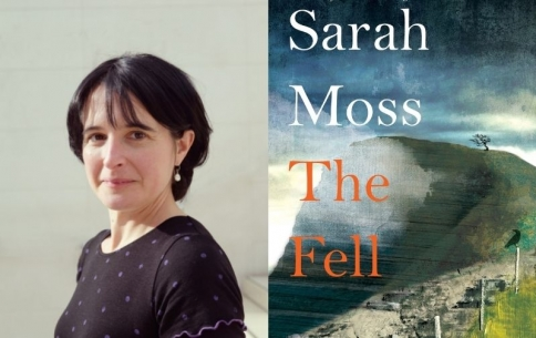 L261 Sarah Moss_ The Fell.jpg